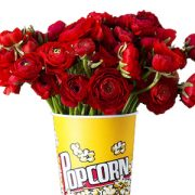 Dozesn of red roses in a popcorn cup