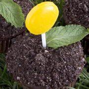 Garden-cupcake002_600Main