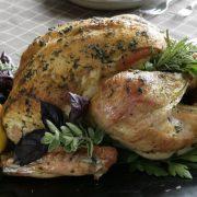 chicken8_600MAIN
