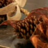 319-Chocolate-Pinecone-Garland_600main