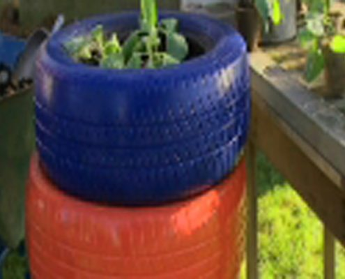 507_Grow_Tire_Garden_600main