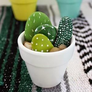 rock-cactus-salt-and-pepper-moms_zps8jdehbm8-e1457472300605