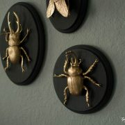 http://www.thegatheredhome.com/diy-gilded-insect-plaques/