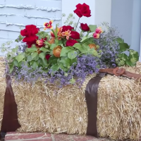 outdoor and porch decor DIY from katie Brown